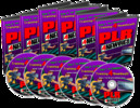 Thumbnail PLR for Newbies Videos - How To Make More Money